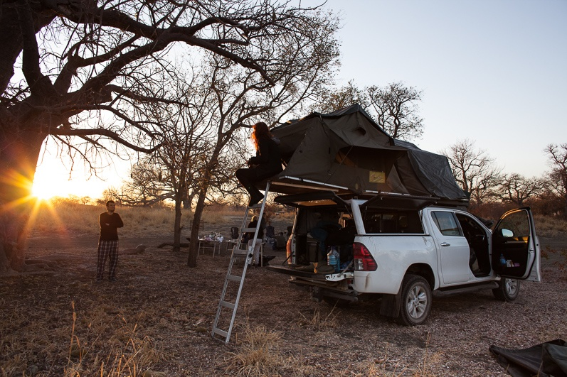 safari-africa-de-sud-botswana-18