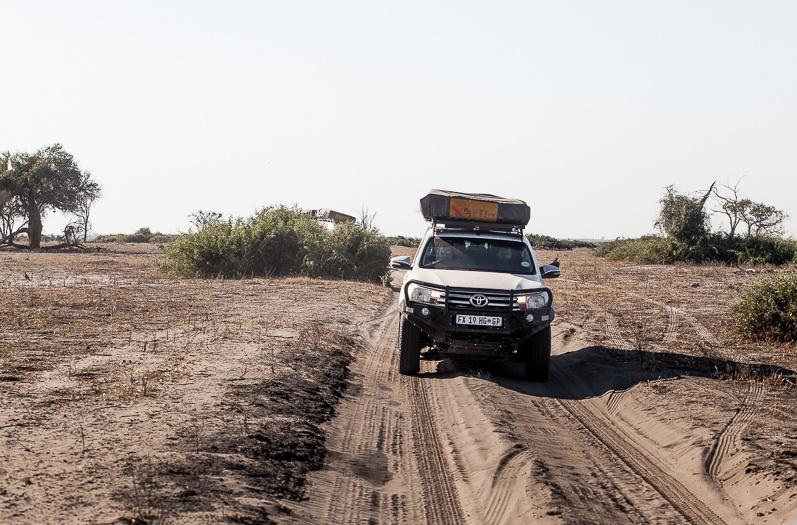 safari-africa-de-sud-botswana-35