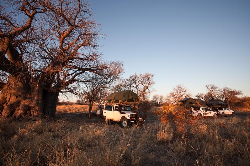 safari-africa-de-sud-botswana-50